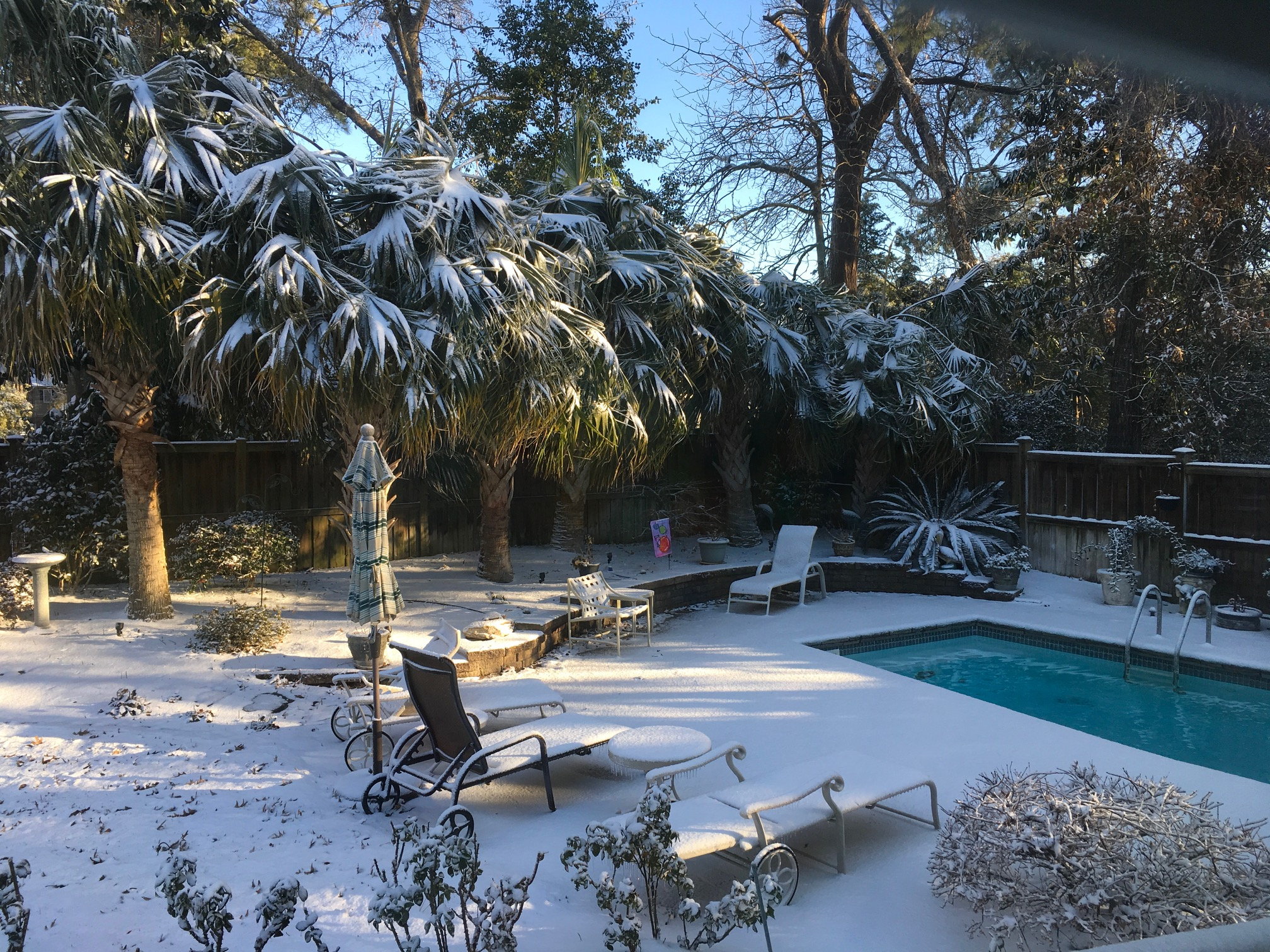 <div class='meta'><div class='origin-logo' data-origin='none'></div><span class='caption-text' data-credit='Linda Thorburn - ABC11 Eyewitness'>Snow in Wilmington.</span></div>