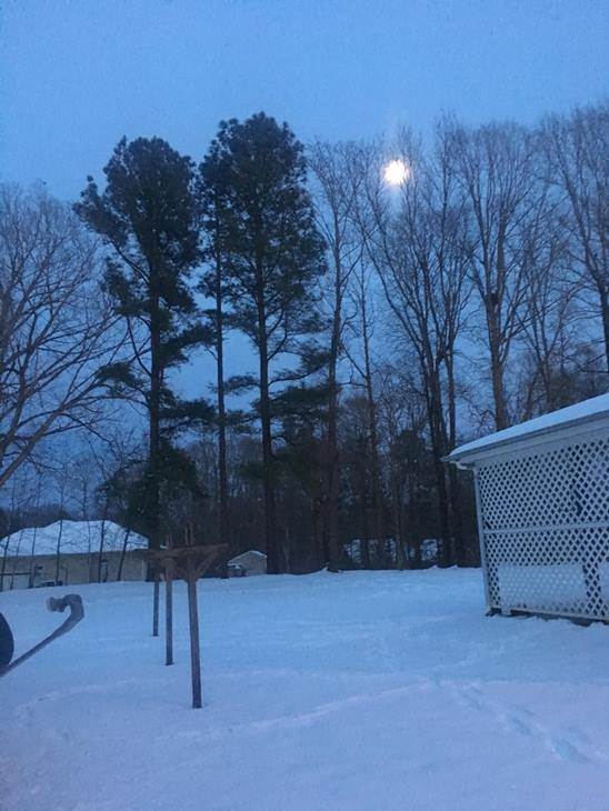 <div class='meta'><div class='origin-logo' data-origin='WTVD'></div><span class='caption-text' data-credit='Yvonne Alston - ABC11 Eyewitness'>Moonlight snowy view</span></div>