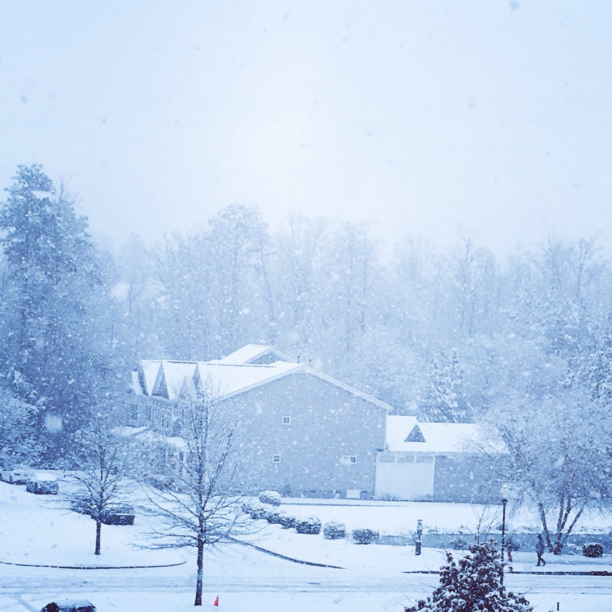 <div class='meta'><div class='origin-logo' data-origin='WTVD'></div><span class='caption-text' data-credit='ABC11 Eyewitness'>Snow in Apex.</span></div>