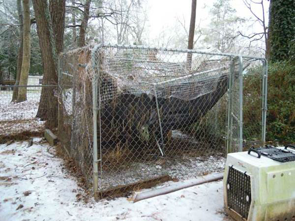 "<div class=""meta image-caption""><div class=""origin-logo origin-image none""><span>none</span></div><span class=""caption-text"">South of Raleigh near the West Lakes schools. The branches are heavy with ice and a large branch falls on a chicken coop. </span></div>"