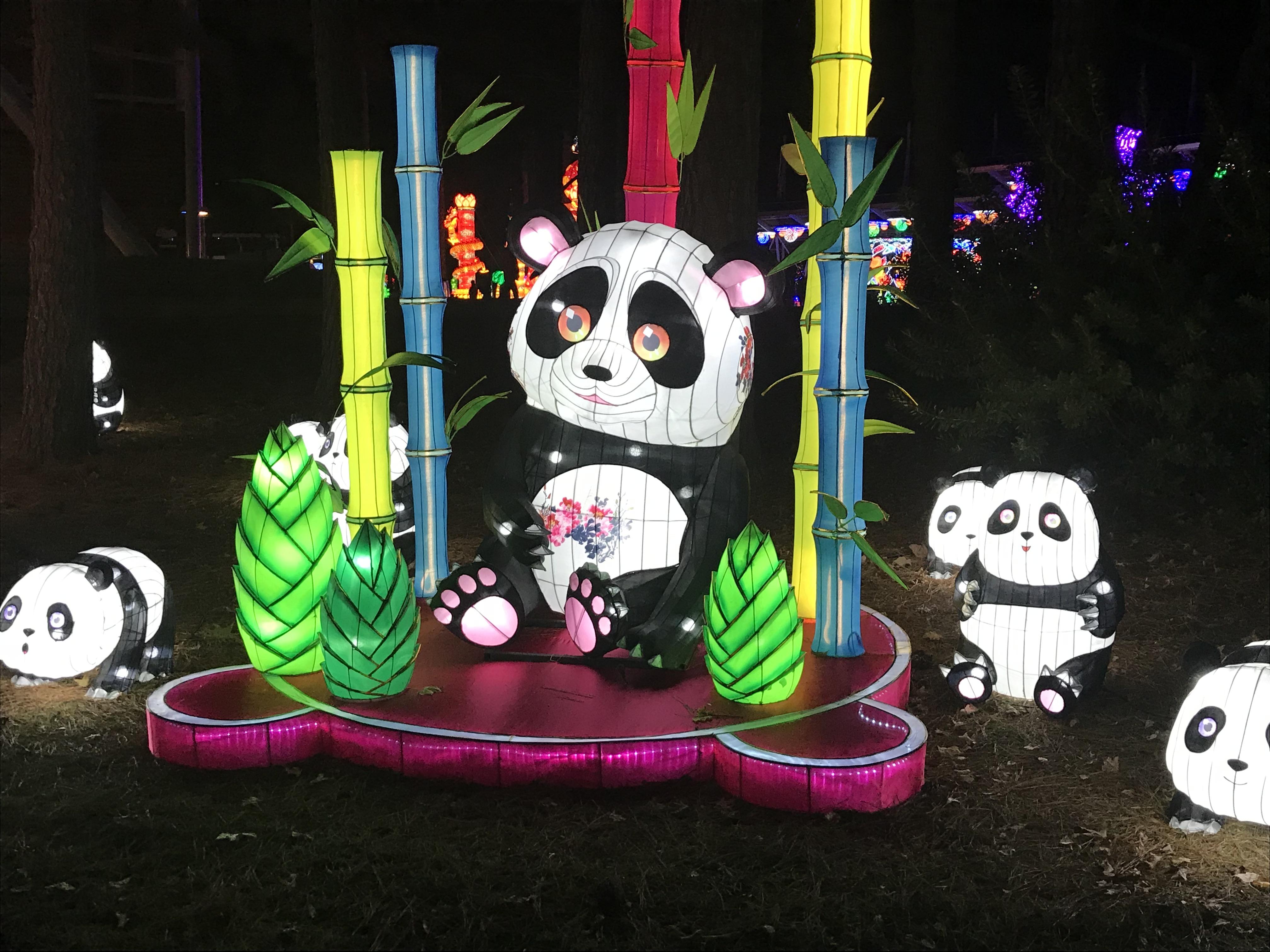 <div class='meta'><div class='origin-logo' data-origin='none'></div><span class='caption-text' data-credit=''>NC Chinese Lantern Festival</span></div>