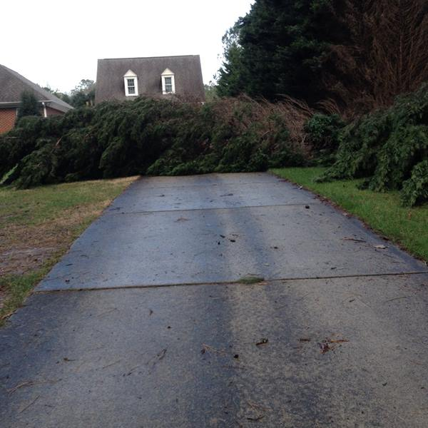 <div class='meta'><div class='origin-logo' data-origin='none'></div><span class='caption-text' data-credit='ABC11 Eyewitness/FlinchumLance'>3 trees down in Raleigh</span></div>