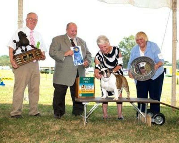 <div class='meta'><div class='origin-logo' data-origin='none'></div><span class='caption-text' data-credit=''>Jean Heatherington's champion dogs and awards won</span></div>