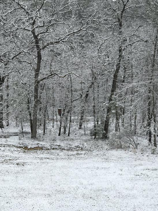 "<div class=""meta image-caption""><div class=""origin-logo origin-image none""><span>none</span></div><span class=""caption-text"">ABC11 eyewitness photos of the snow in North Carolina</span></div>"