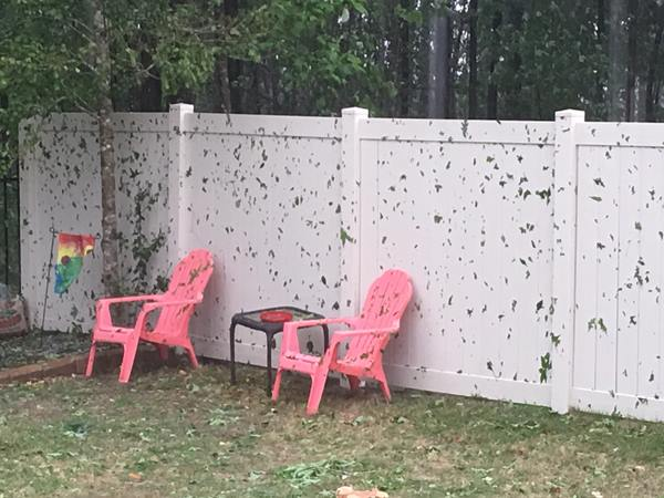 <div class='meta'><div class='origin-logo' data-origin='WTVD'></div><span class='caption-text' data-credit='Vann Holland/ABC11 Eyewitness'>Severe storms brought hail, winds to Central North Carolina on Thursday, April 28.</span></div>