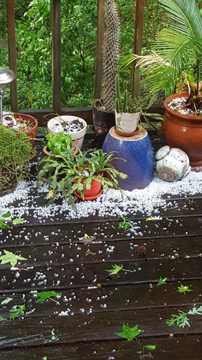 <div class='meta'><div class='origin-logo' data-origin='WTVD'></div><span class='caption-text' data-credit='ABC11 Eyewitness'>In Raleigh. Severe storms brought hail, winds to Central North Carolina on Thursday, April 28.</span></div>