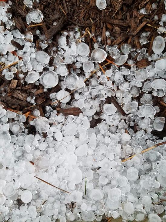 <div class='meta'><div class='origin-logo' data-origin='WTVD'></div><span class='caption-text' data-credit='ABC11 Eyewitness'>Hail in Wake Forest.</span></div>