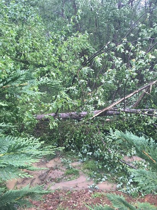 <div class='meta'><div class='origin-logo' data-origin='WTVD'></div><span class='caption-text' data-credit='ABC11 Eyewitness'>Some serious straight line winds came through Rolesville.  Big trees down, flooding and hail.</span></div>