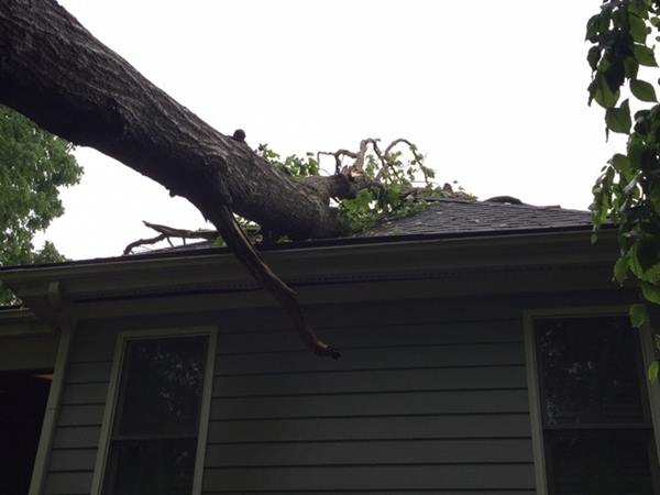 <div class='meta'><div class='origin-logo' data-origin='WTVD'></div><span class='caption-text' data-credit='ABC11 Eyewitness'>A tree damages a home in Cary.</span></div>