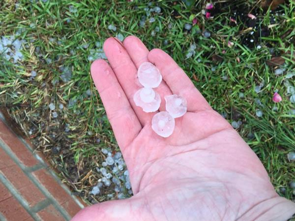 <div class='meta'><div class='origin-logo' data-origin='WTVD'></div><span class='caption-text' data-credit='ABC11 Eyewitness'>long lasting hail storm in Bunnlevel.</span></div>