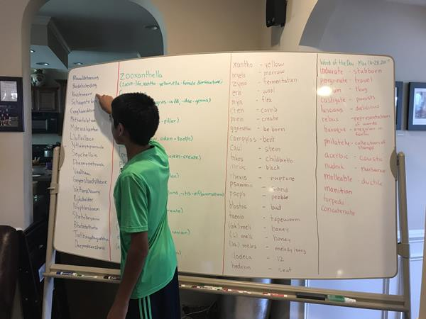 <div class='meta'><div class='origin-logo' data-origin='WTVD'></div><span class='caption-text' data-credit='Ngozi Ekeledo'>Rohan Sachdev's big board is loaded with spelling words</span></div>