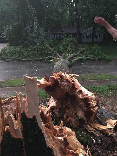 <div class='meta'><div class='origin-logo' data-origin='WTVD'></div><span class='caption-text' data-credit='ABC11 Eyewitness'>An oak tree came crashing down.</span></div>