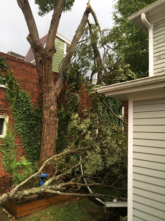 062916wtvdseverewxpix012 STORMS CAUSE DAMAGE, POWER OUTAGES ACROSS CENTRAL NORTH CAROLINA