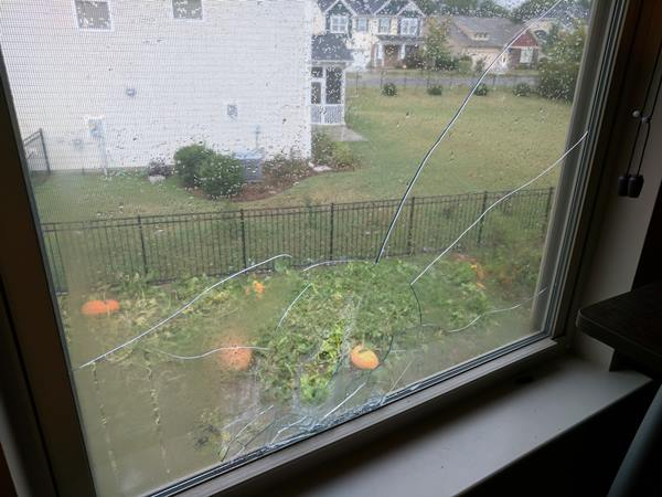 "<div class=""meta image-caption""><div class=""origin-logo origin-image none""><span>none</span></div><span class=""caption-text"">Broken window and damaged pumpkins from the hail storm in Fuquay-Varina, NC (Alisa Brewer)</span></div>"