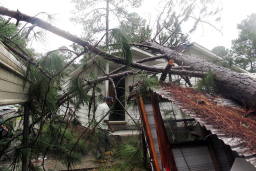 <div class='meta'><div class='origin-logo' data-origin='none'></div><span class='caption-text' data-credit=''>Melvin Gatlin Jr. walks to the back door of his father's house in Valdosta, Ga., beneath a pine tree that crashed onto the roof (AP Photo/Russ Bynum)</span></div>