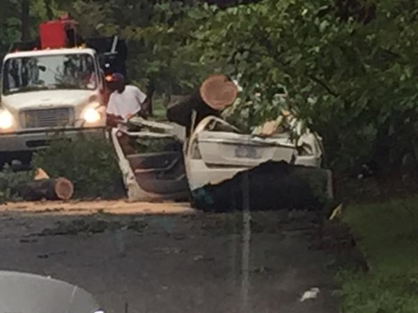 <div class='meta'><div class='origin-logo' data-origin='WTVD'></div><span class='caption-text' data-credit='Randall Edge - ABC11 Eyewitness'>A car crushed by a tree on E. Lee Street and Third Street in Smithfield.</span></div>