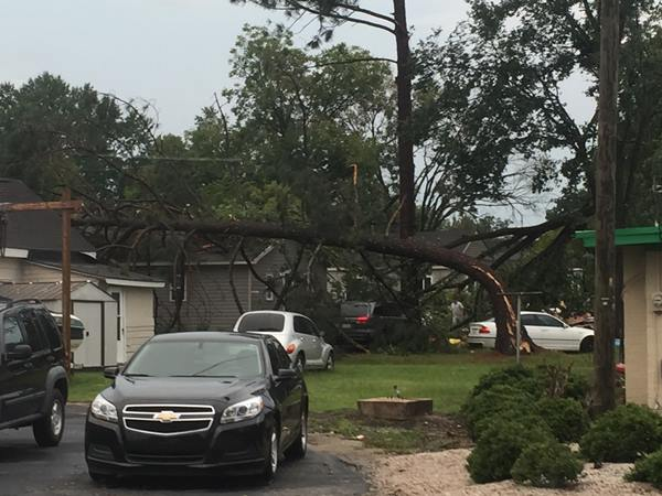 <div class='meta'><div class='origin-logo' data-origin='WTVD'></div><span class='caption-text' data-credit='Randall Edge - ABC11 Eyewitness'>Trees were blown over near 5th Street in Smithfield.</span></div>