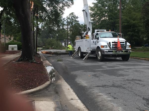 <div class='meta'><div class='origin-logo' data-origin='WTVD'></div><span class='caption-text' data-credit='Randall Edge - ABC11 Eyewitness'>Smithfield town employees work to remove storm debris and fix downed power lines.</span></div>