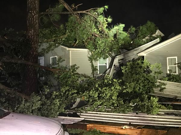 <div class='meta'><div class='origin-logo' data-origin='WTVD'></div><span class='caption-text' data-credit='Robert Judson'>Heavy damage from a fallen tree in north Smithfield.</span></div>