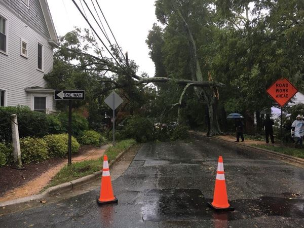 <div class='meta'><div class='origin-logo' data-origin='none'></div><span class='caption-text' data-credit=''>ABC11 Eyewitness photo - Rosemary Street in Chapel Hill</span></div>
