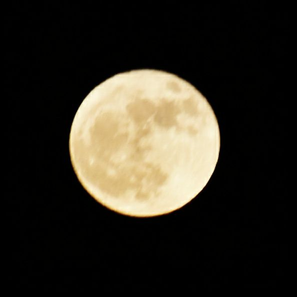 "<div class=""meta image-caption""><div class=""origin-logo origin-image none""><span>none</span></div><span class=""caption-text"">The first and only supermoon of 2017. (Credit: Tara Mckeithan/Facebook)</span></div>"