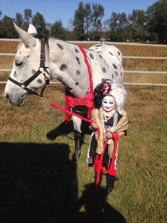 <div class='meta'><div class='origin-logo' data-origin='none'></div><span class='caption-text' data-credit=''>Cruella and Cricket the dalmatian horse - Jessica Johnson</span></div>