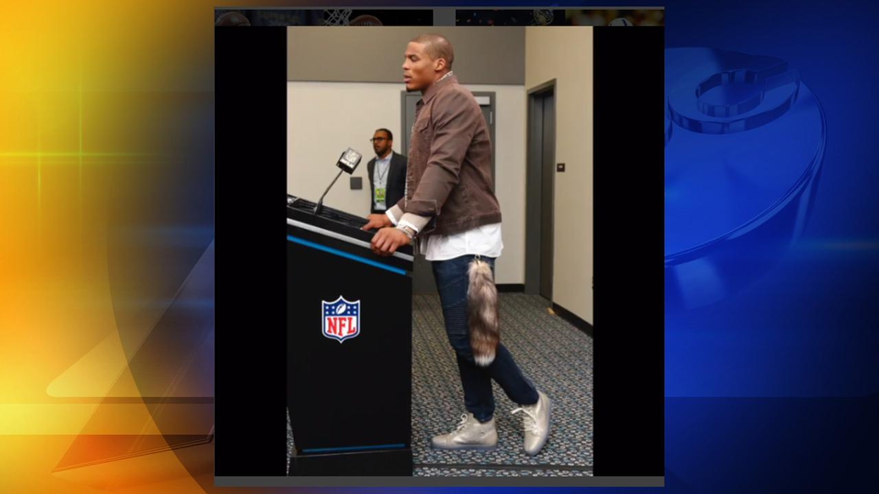 Cam Newton sported a fox tail Monday night, November 24, 2015, on ESPNs SportsCenter
