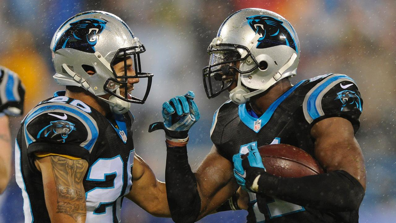 Carolina Panthers Roman Harper (41) celebrates his fumble recovery against the Indianapolis Colts with Kurt Coleman (20) in the first half of an NFL football game in Charlotte