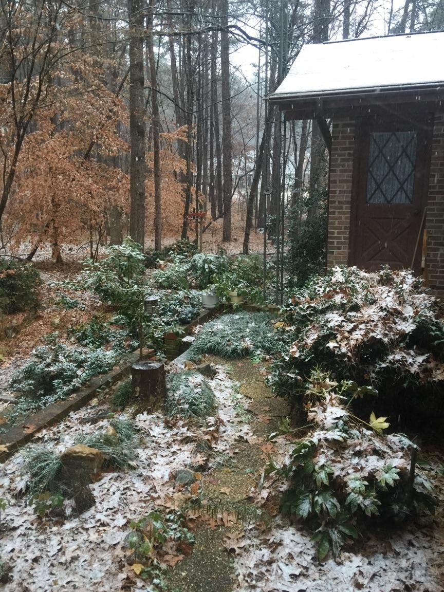 <div class='meta'><div class='origin-logo' data-origin='none'></div><span class='caption-text' data-credit='Credit: Cassie Mentha'>Snow in Wake County near Carpenter Pond and Old Creedmoor</span></div>