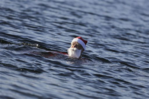 """<div class=""""meta image-caption""""><div class=""""origin-logo origin-image none""""><span>none</span></div><span class=""""caption-text"""">A member of the winter and ice swimming club 'Seehunde Berlin', (Berlin Seals) takes part in the annual Christmas swim,  at the Oranke Lake in Berlin.  (AP Photo/ Markus Schreiber)</span></div>"""