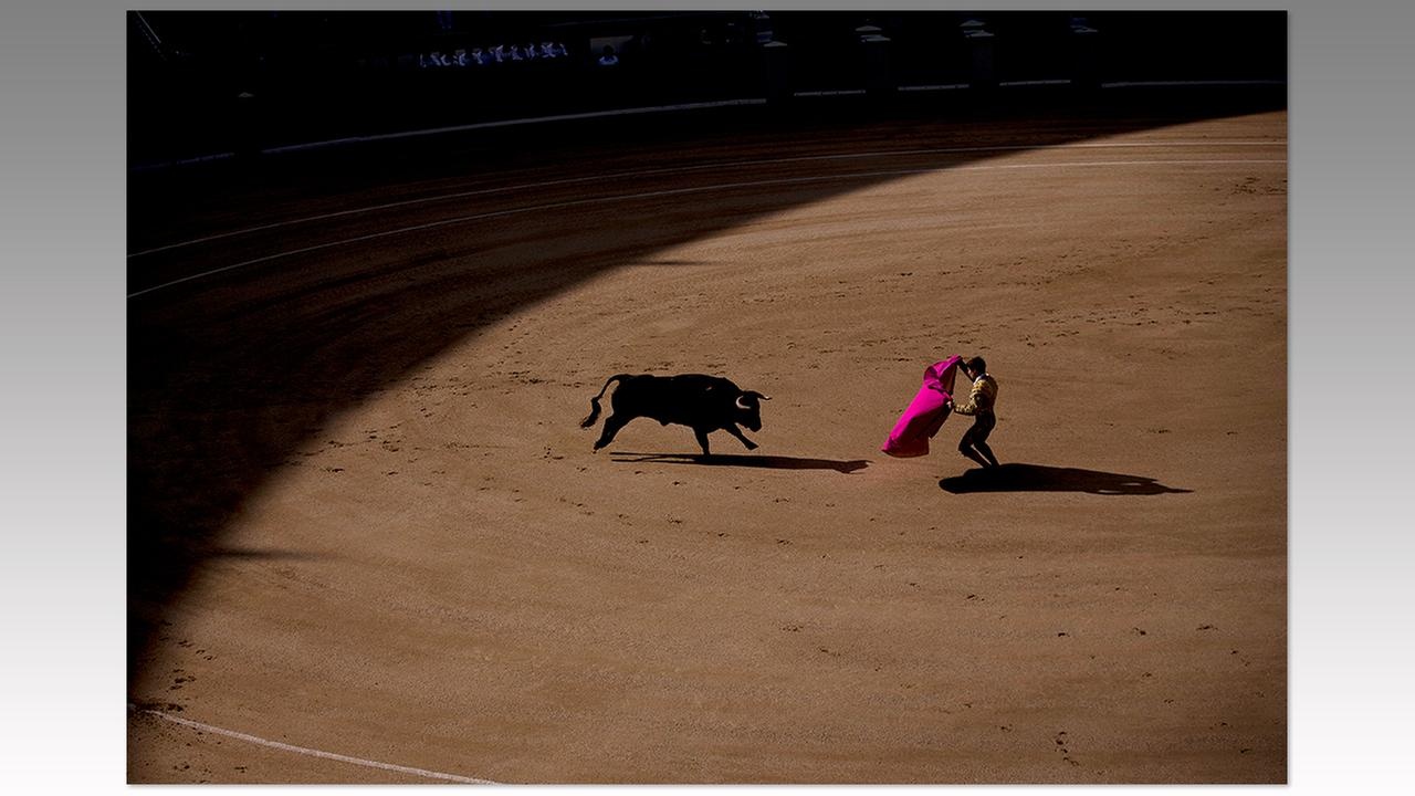 So technically, this wasnt this week (taken April 24 in Madrid, Spain) but it was released to coincide with this months top bullfights in Madrid, and tensions from detractors.Francisco Seco