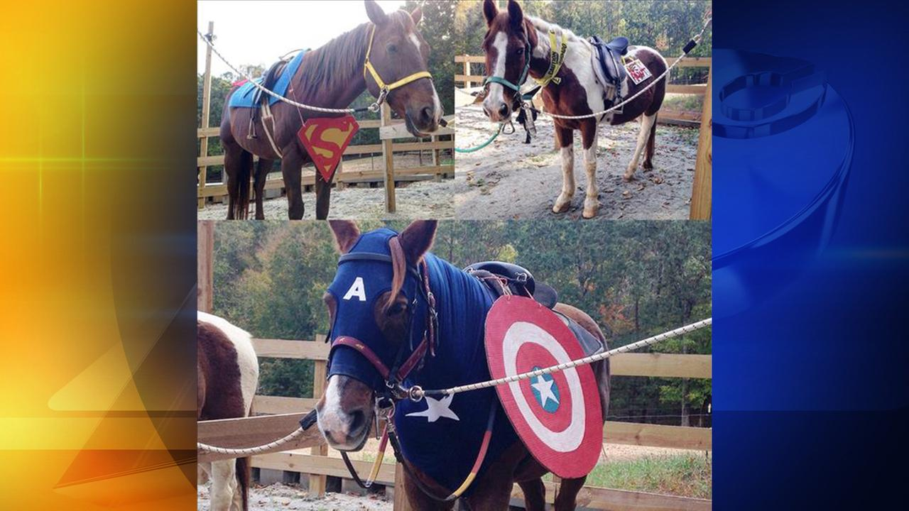 The winners of the 2016 ABC11 Cutest Pet Costume contest are the super hero horses