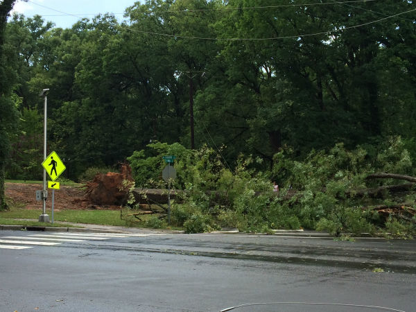 Thunderstorms dumped heavy rain and downed some trees in parts of the central North Carolina Wednesday afternoon. This Roxboro and Knox Road in Durham. <span class=meta>WTVD Photo/ I-Witness Photo</span>