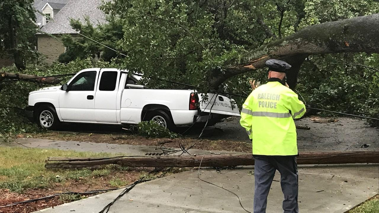 No one was inside the truck when the tree fell.