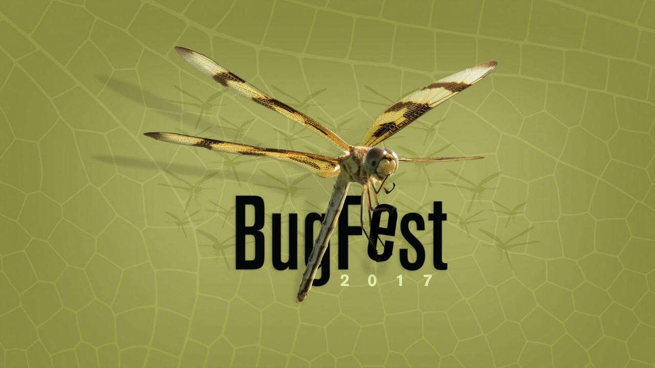 Join Us at BugFest 2017!