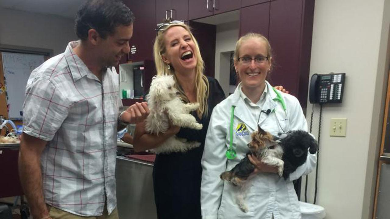 Vote for Americas Favorite Veterinarian Dr. Page Wages in Raleigh