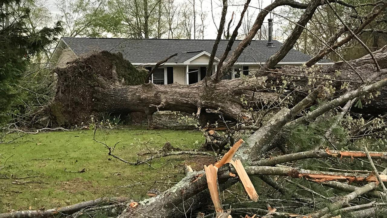 Storm damage in Wendell.