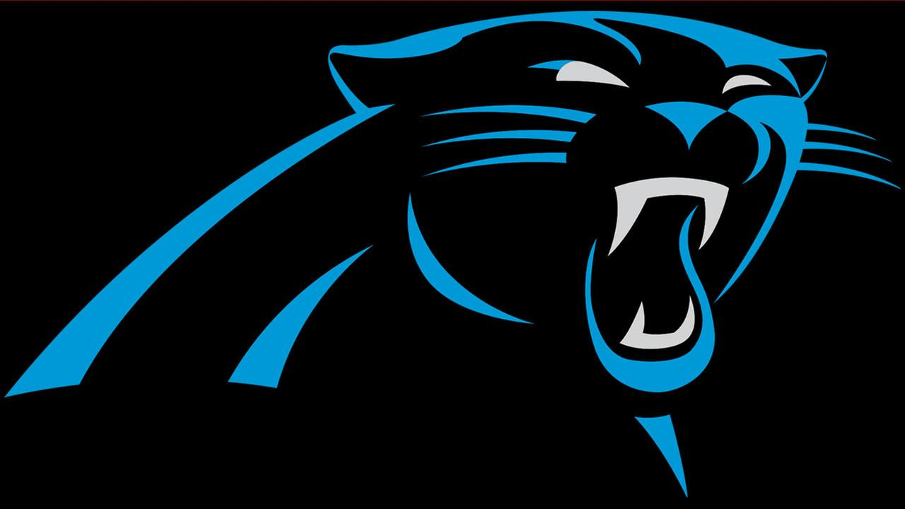 Time to make plans - Panthers reveal 2017 schedule