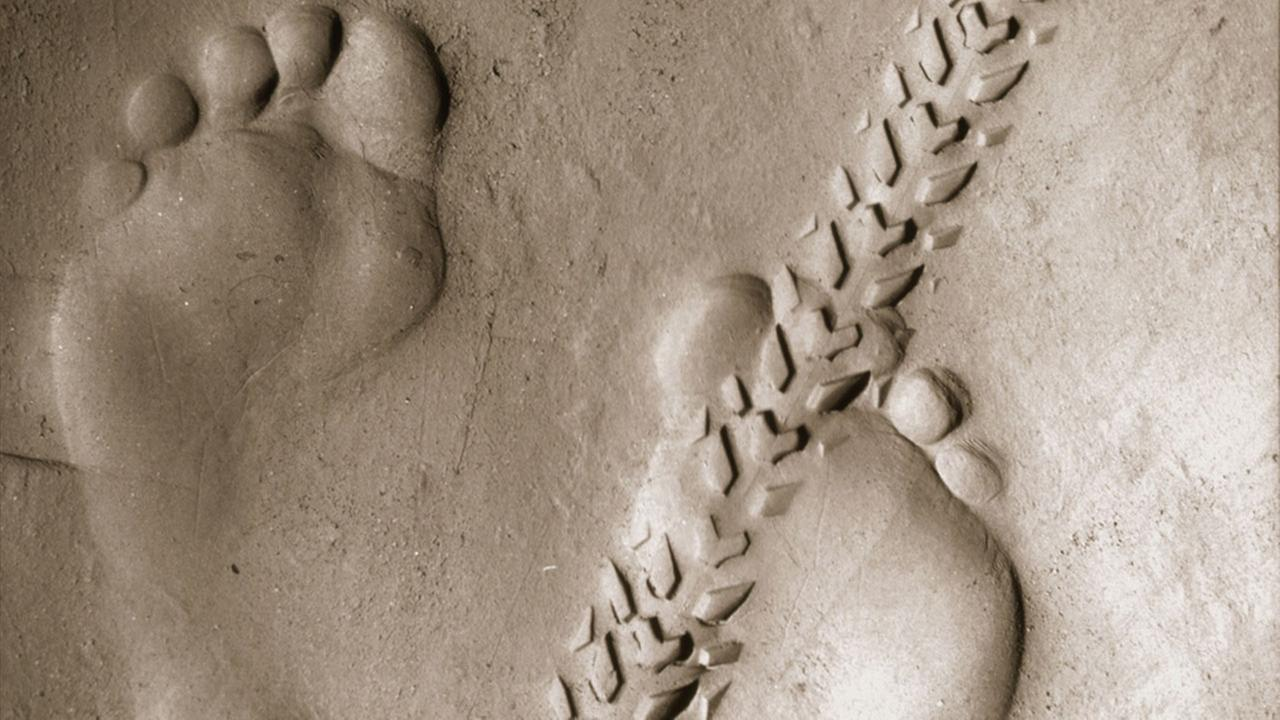 Bigfoot or Sasquatch footprints graphic