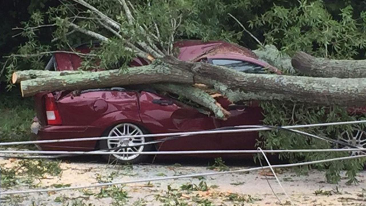 A large branch from an oak tree near Wake Forest Elementary School fell on a car and power lines Friday morning.