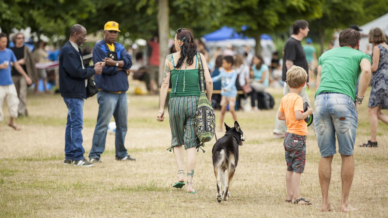 Dog Walking Waiver For Events