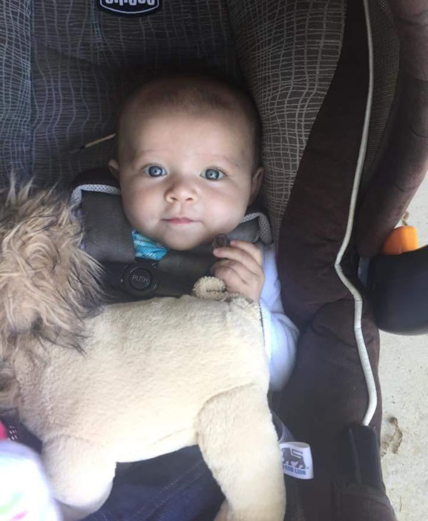 <div class='meta'><div class='origin-logo' data-origin='none'></div><span class='caption-text' data-credit='Abby Hulsizer'>Sadie Grey Hulsizer with her toy lion from Food Lion.</span></div>