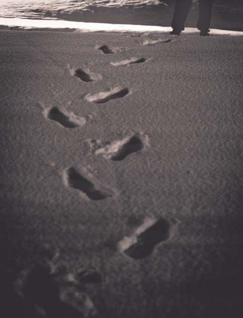 <div class='meta'><div class='origin-logo' data-origin='none'></div><span class='caption-text' data-credit='Credit: Robyn'>Footprints in Clayton</span></div>