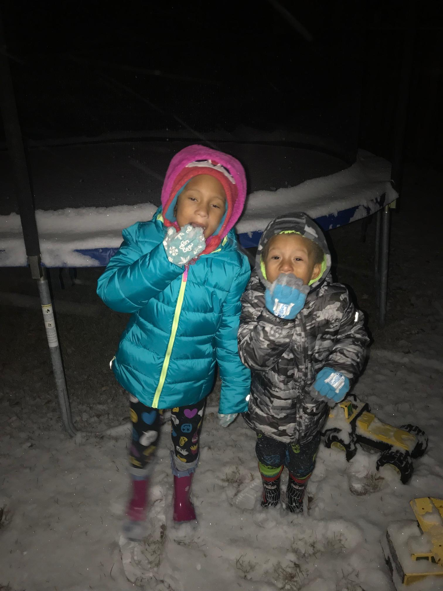 <div class='meta'><div class='origin-logo' data-origin='none'></div><span class='caption-text' data-credit='Credit: Melanie Livingston'>Savannah and Chance enjoying the snow</span></div>