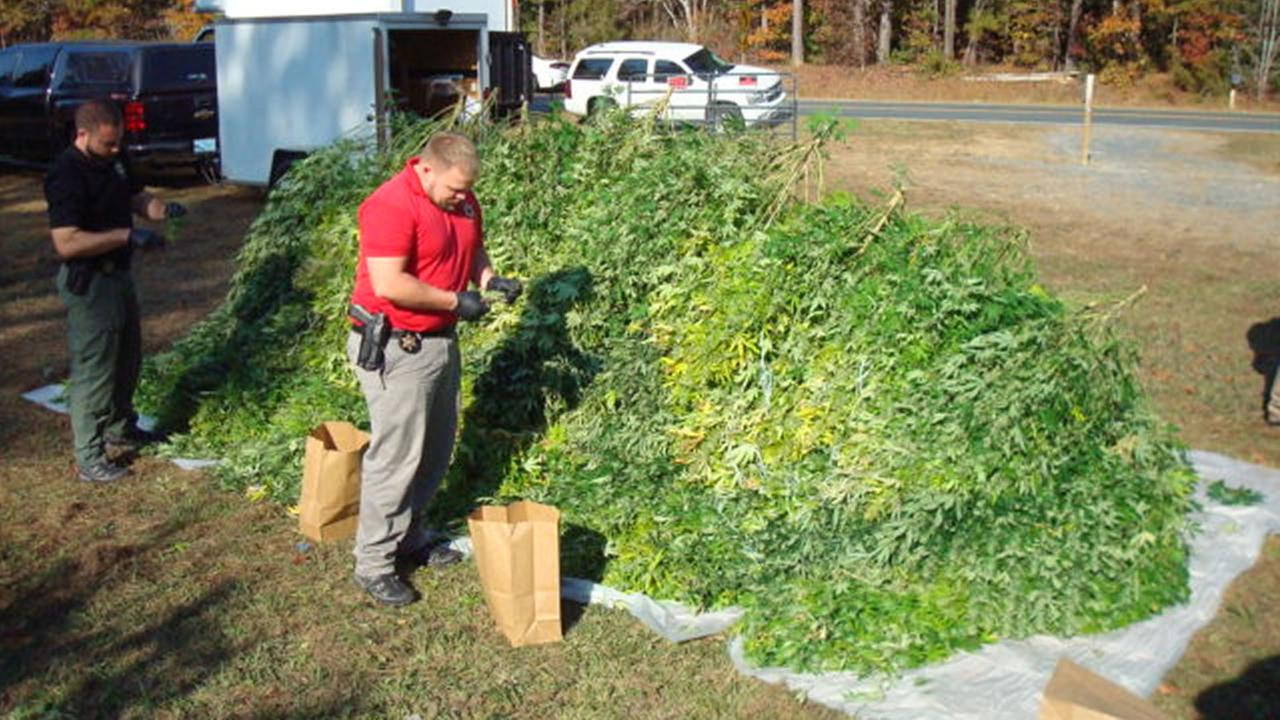 image courtesy Moore County Sheriffs OfficeMoore County deputies uncover a large indoor marijuana growing operation.