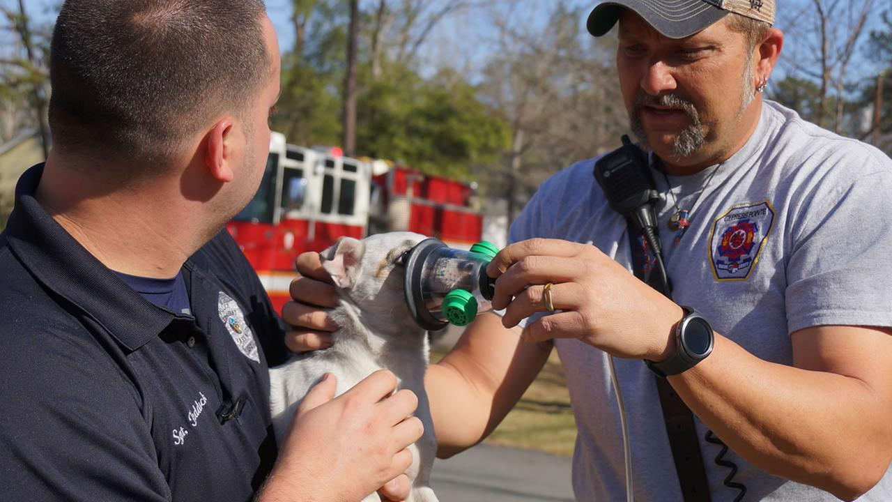 Patty gets oxygen treatment. (image courtesy Cypress Pointe Fire and Rescue)