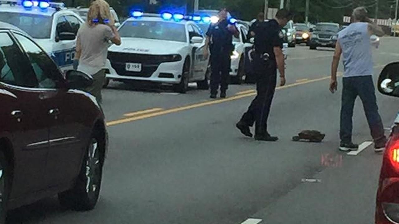 Police guide a large snapping turtle to safety (image courtesy Town of Fuquay-Varina.)