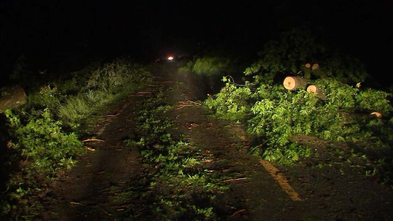 Fallen trees block a road in Sampson County.