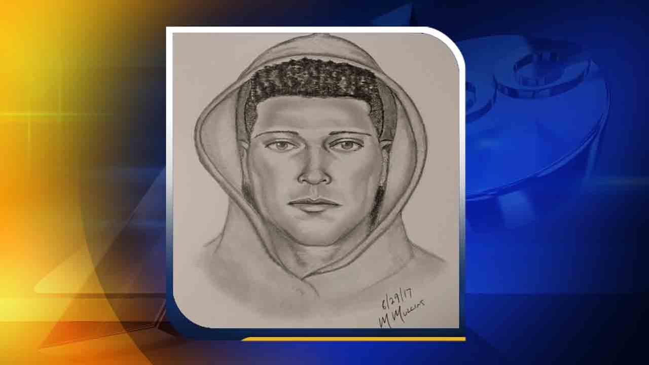 Sketch of possible suspect