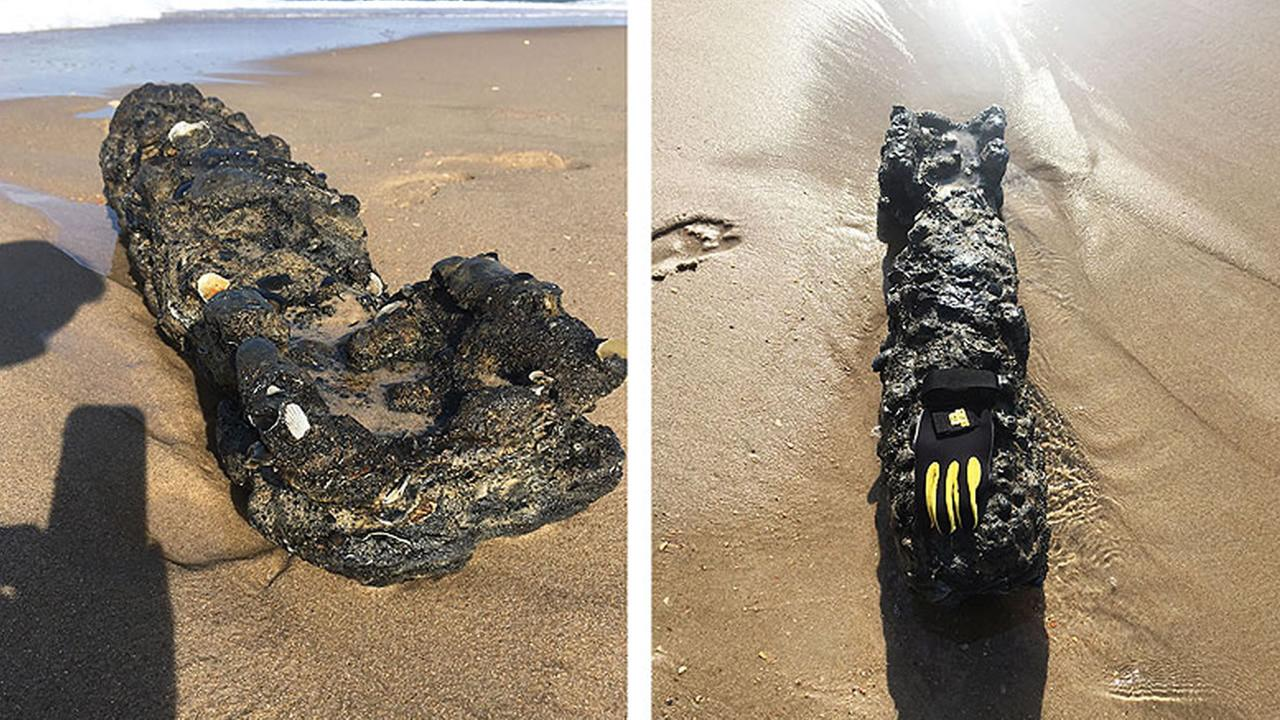 images of the object that washed up on Shelly Island courtesy of Dare County Emergency Management.